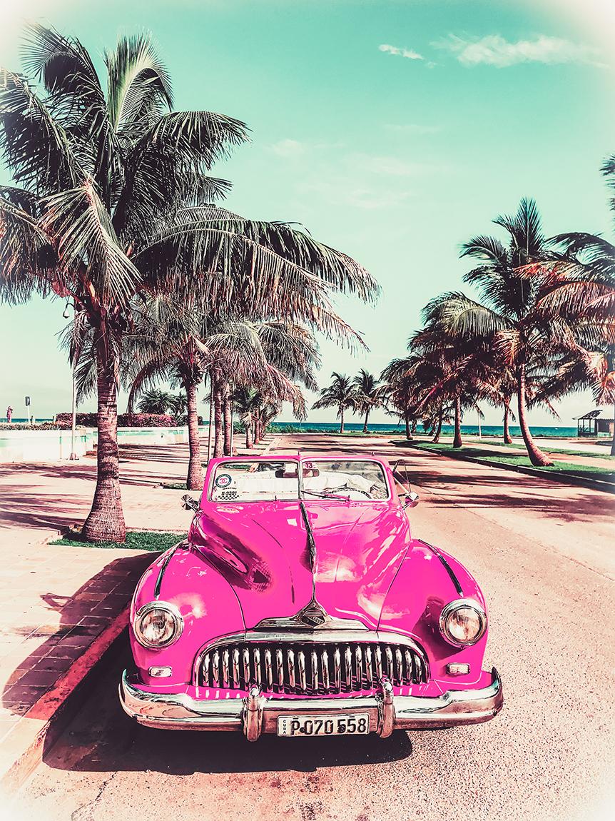 Sea of Hope Invite Car photo - web