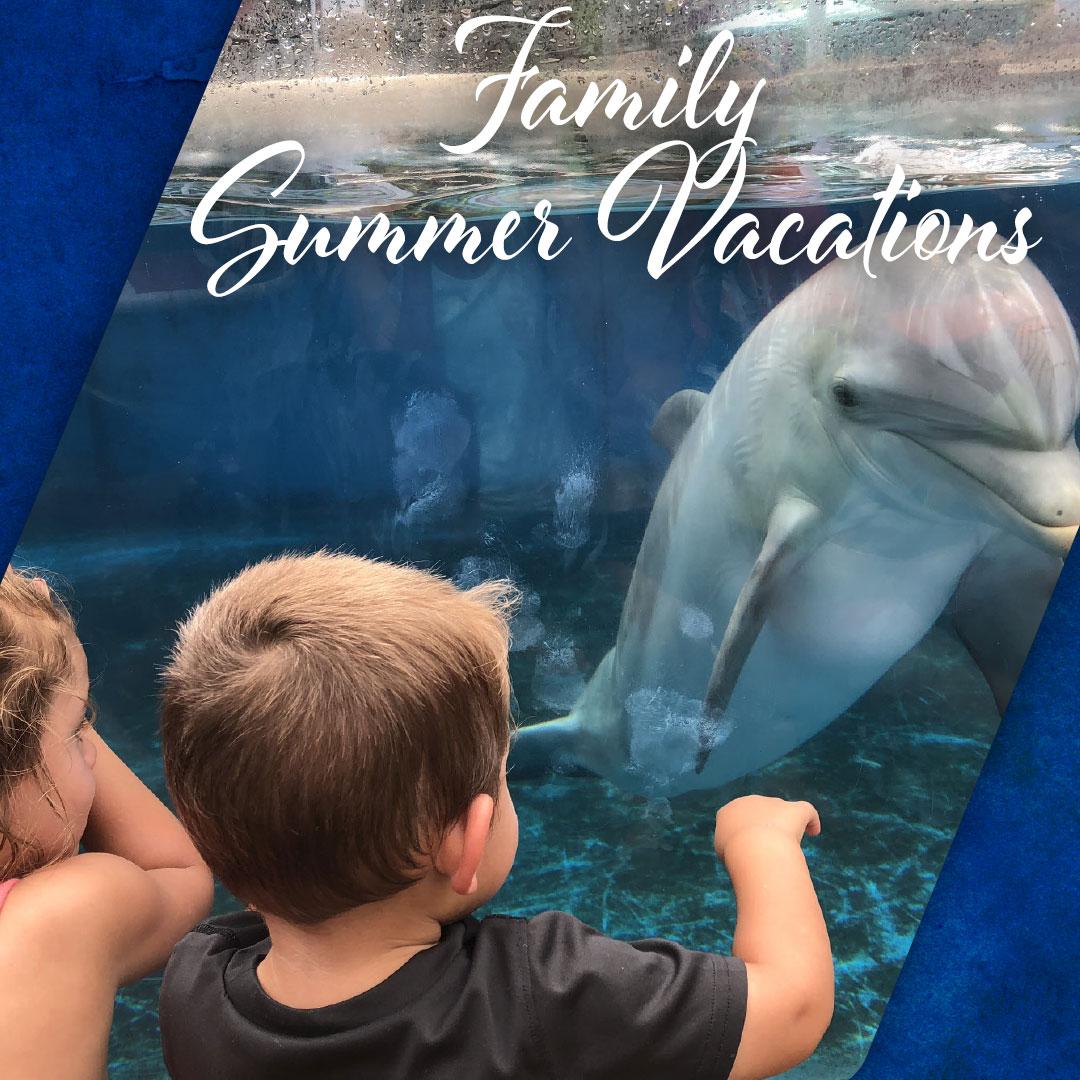 Family Summer Vacations thumbnail image