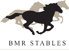 BMR Stables Logo